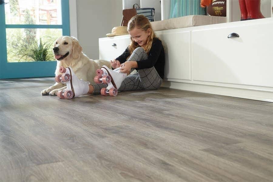 tarima barcelona mascotas suelo con textura